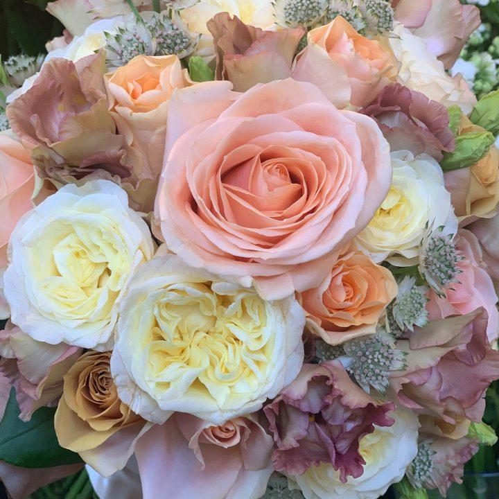 Pomlad v Cvetličarni